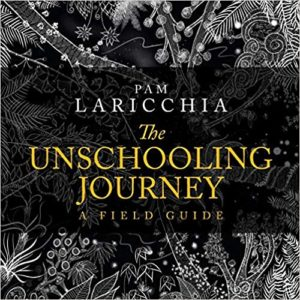 Cover of The Unschooling Journey