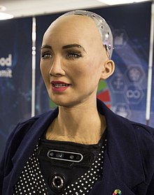 The Humanoid Robot Sophia